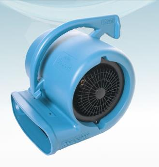 Where to find CARPET FLOOR DRY FAN in Edmonds