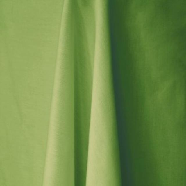 Where to find LIME GREEN LINEN in Edmonds