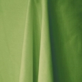 Where to rent LIME GREEN LINEN in Edmonds WA