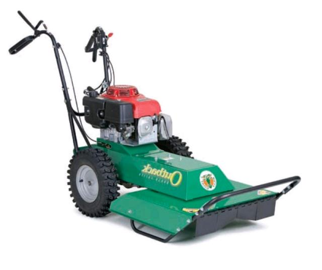 Where to find BRUSH MOWER, WALK BEHIND SELF PROPELLED in Edmonds
