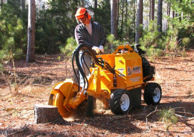 Where to find STUMP GRINDER, 2250XP BANDIT  WHEELED in Edmonds