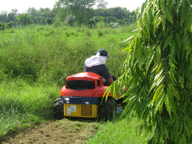 Brush Mower Riding 4 Wheel Drive Rentals Edmonds Wa Where